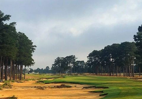 Pinehurst Course 4 #18